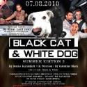 BLACK CAT & WHITE DOG